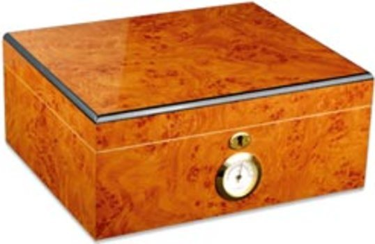 Palermo Cigar Humidor Basic Edition
